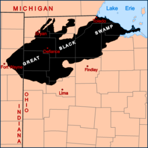 Lima Ohio's Origin, The Great Black Swamp, Malaria and Quinine - Webcore Internet Solutions