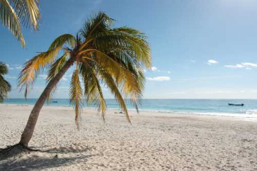 A beach in Florida sounds really good year round. We want to go to there.